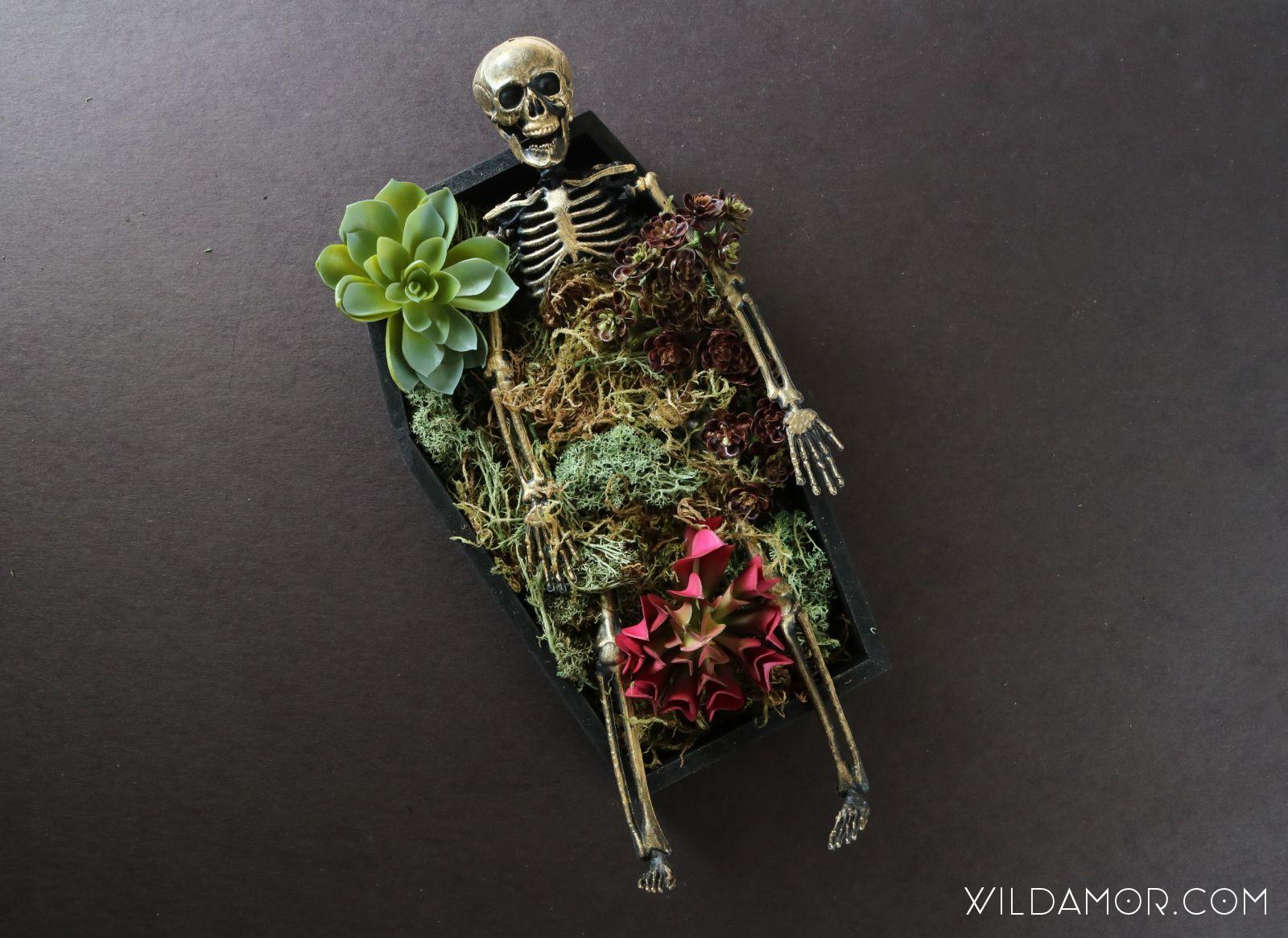 DIY Skeleton Coffin Succulent Planter