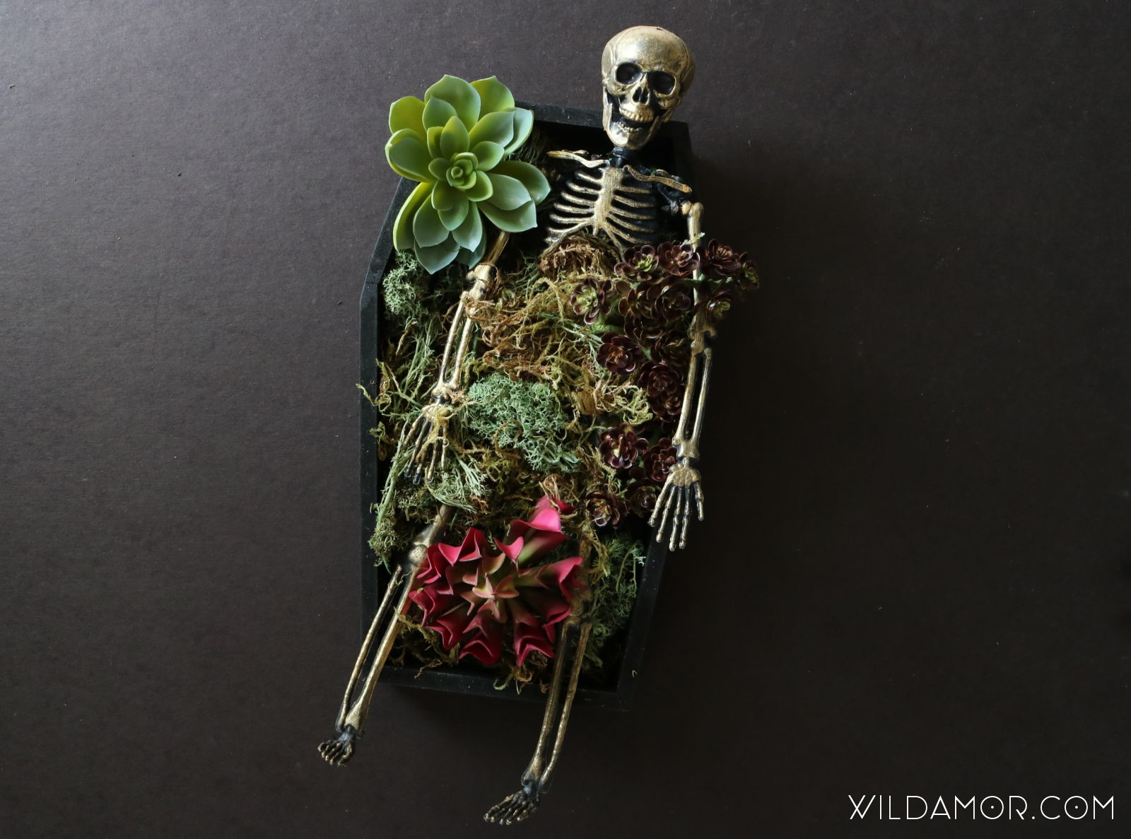 DIY Skeleton Coffin Succulent Planter