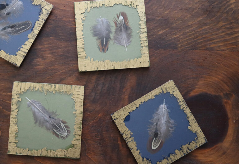 Darice DIY Feather Coasters