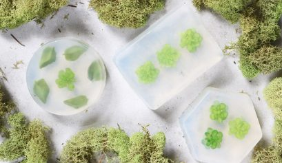 DIY Soap Bars with Succulents