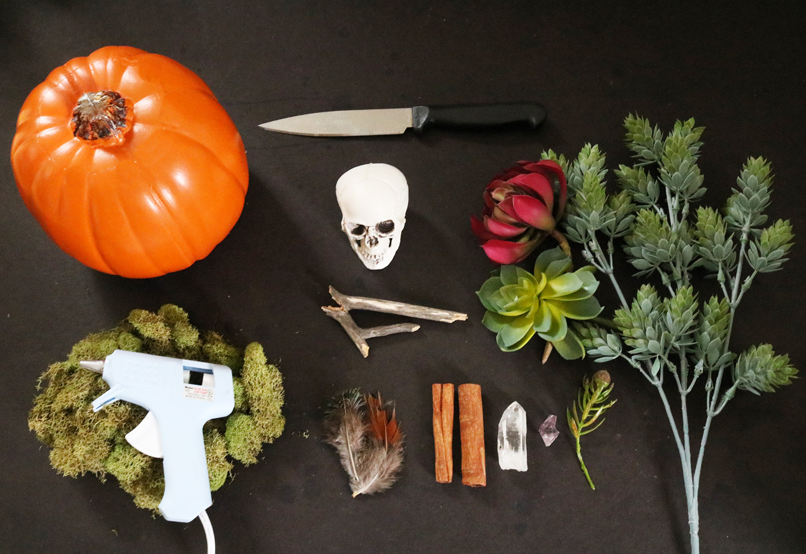 DIY Skull and Succulent Pumpkin Centerpiece