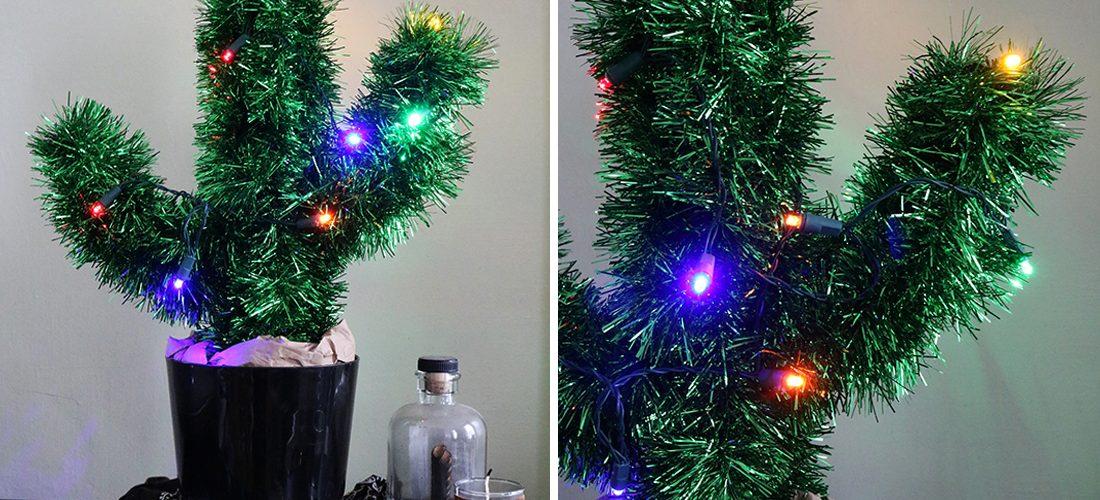 How To Make A Diy Christmas Cactus Wild Amor